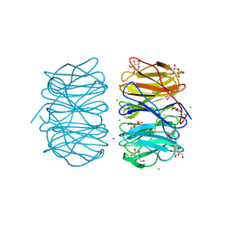 Molmil generated image of 6rgu