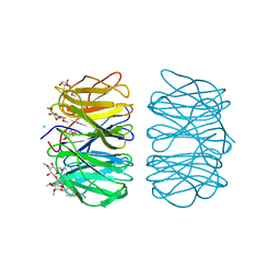 Molmil generated image of 6rgw