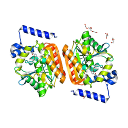 Molmil generated image of 6rky