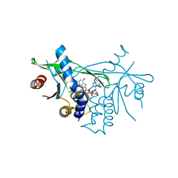 Molmil generated image of 6rm0