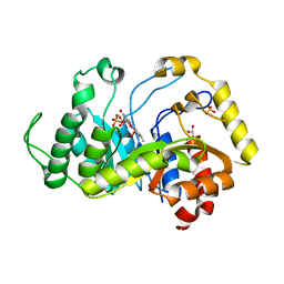 Molmil generated image of 6sgg