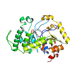 Molmil generated image of 6sgn