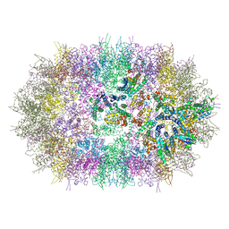 Molmil generated image of 6ssk