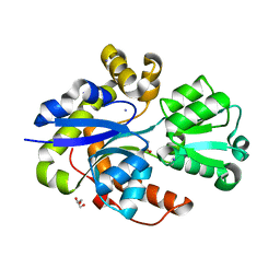 Molmil generated image of 6ssy