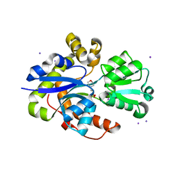 Molmil generated image of 6st1