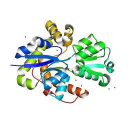 Molmil generated image of 6stl