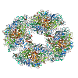 Molmil generated image of 6tcl