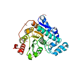 Molmil generated image of 6tcy