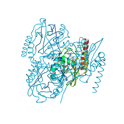 Molmil generated image of 6uac