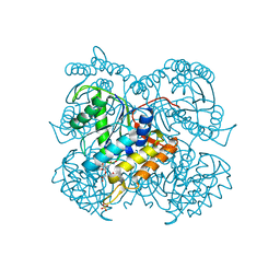 Molmil generated image of 6ull