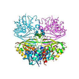 Molmil generated image of 6utn