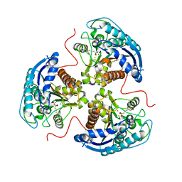Molmil generated image of 6v7d