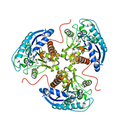 Molmil generated image of 6v7f