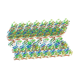 Molmil generated image of 6ve7