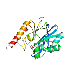 Molmil generated image of 6yi4