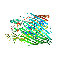 Molmil generated image of 6yy5