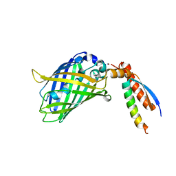 Molmil generated image of 7bwn