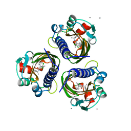 Molmil generated image of 7std